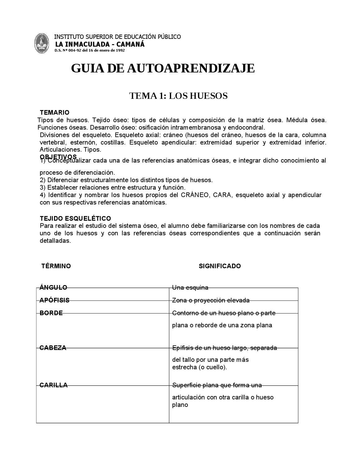 Guia anatomia 1 by elmer - issuu