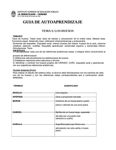 Guia anatomia 1 by elmer - issuu