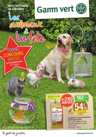 Catalogue gamm vert 24 09 04 10 by joe monroe issuu - Gamme vert catalogue animalerie ...