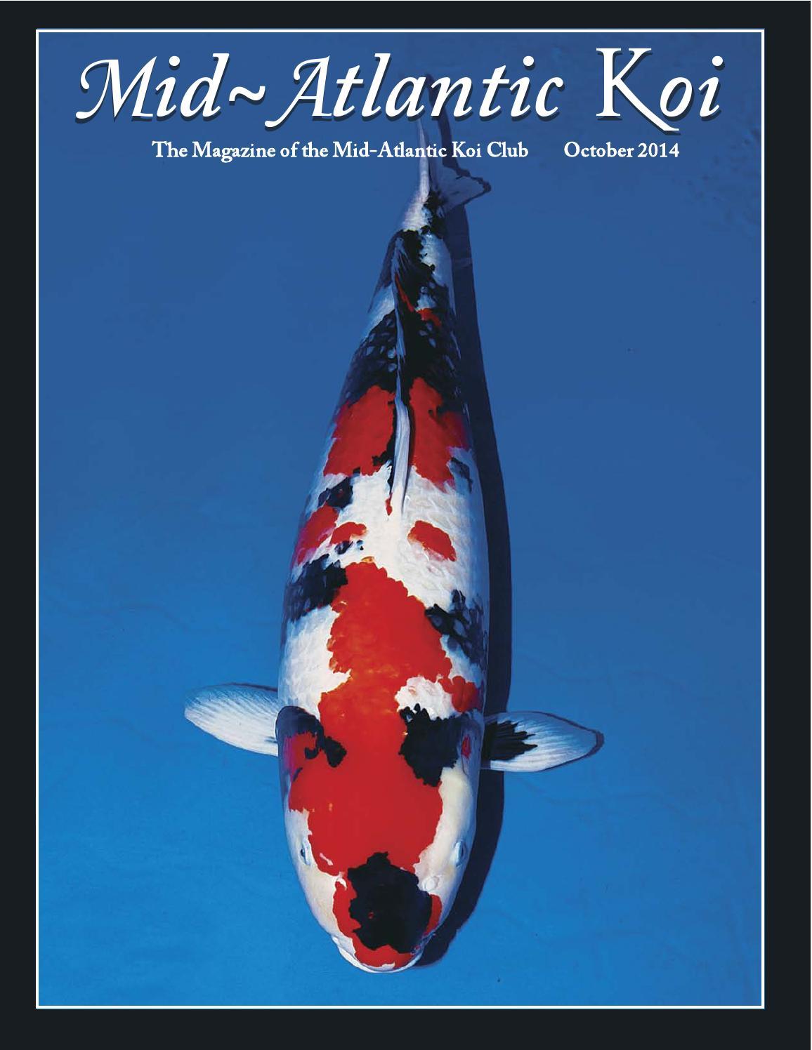 Mid atlantic koi magazine october 2014 by cindy graham issuu for Koi new york
