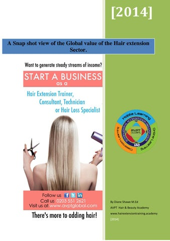 Hair Extension Snapshot Industry Report By Diane Shawe 2014 By