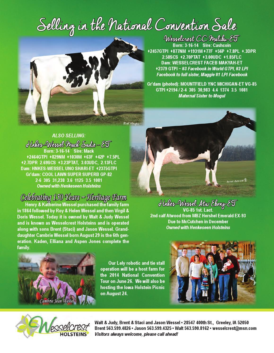 June 2014 WI Holstein News by Wisconsin Holstein News - issuu