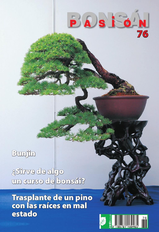 Bons i pasi n 76 by jardin press issuu for Oficina 3058 cajamar