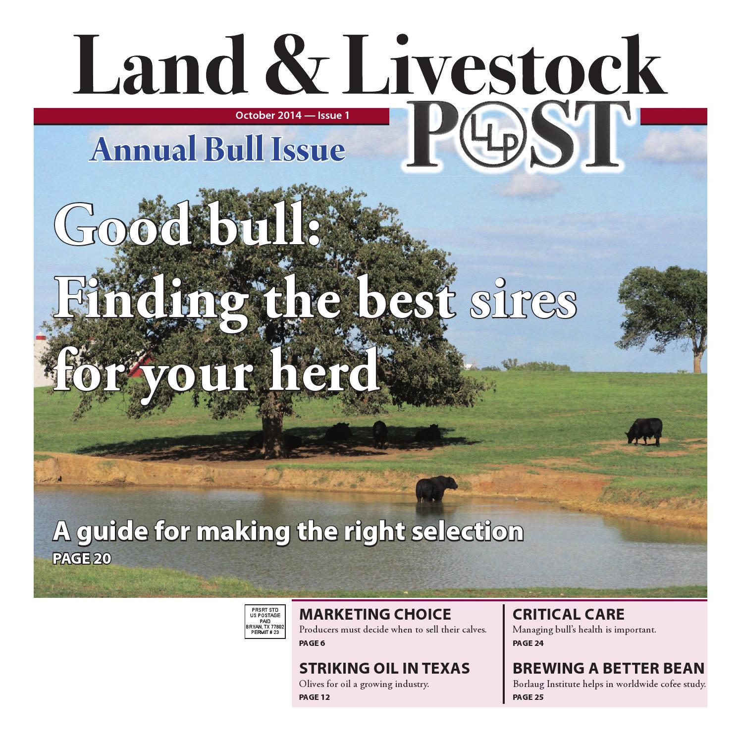 Land and Livestock Post by The Eagle Advertising Department