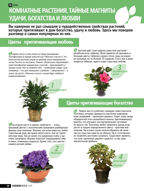 Магия растений Page_28
