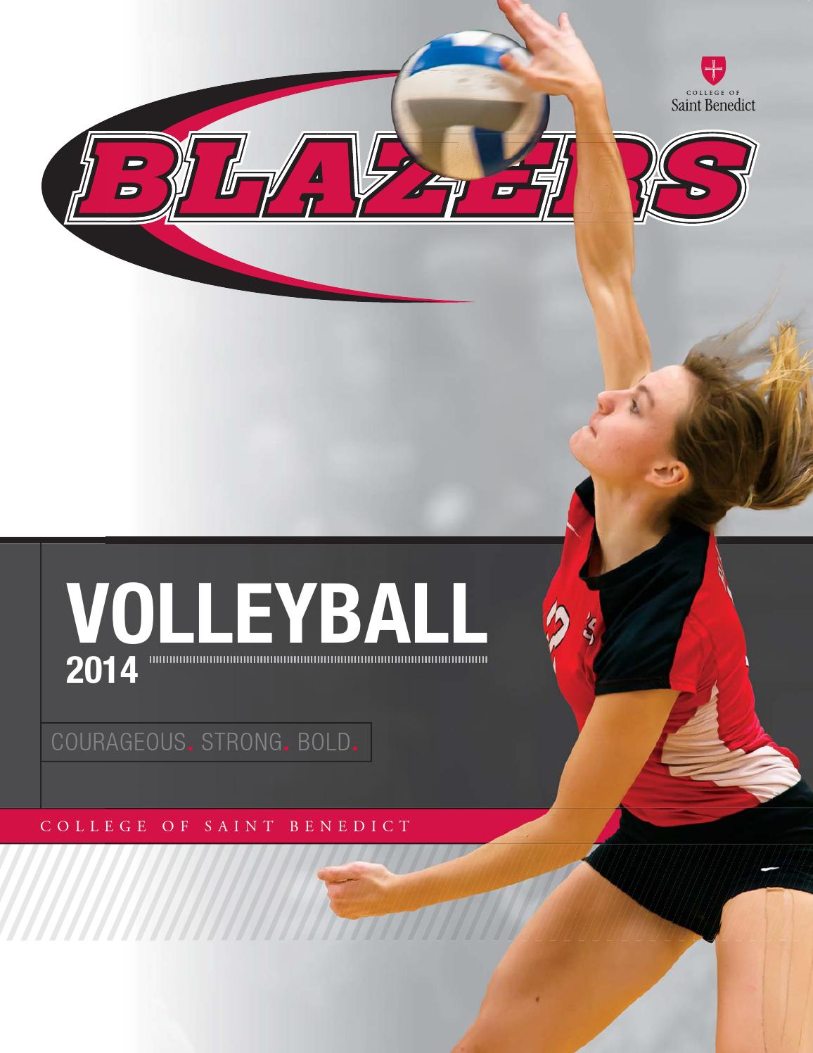 Authorized Retailer of Scrapbook Page Volleyball Sports Pride