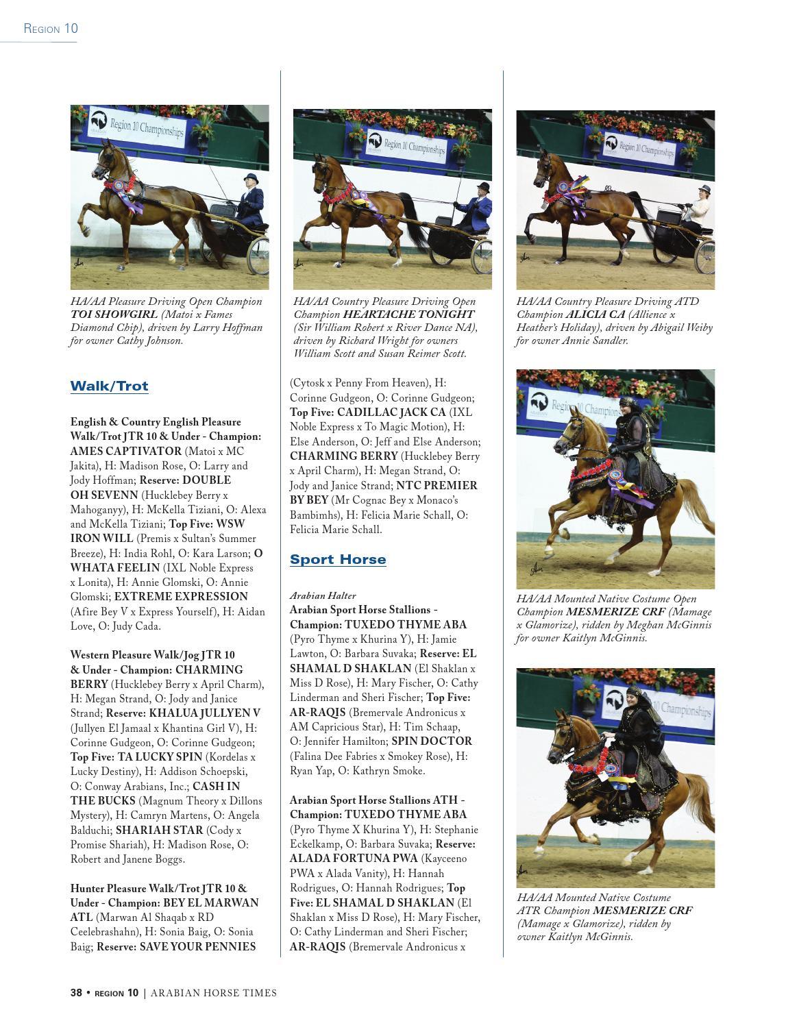 2014 Region 10 by Arabian Horse Times - issuu