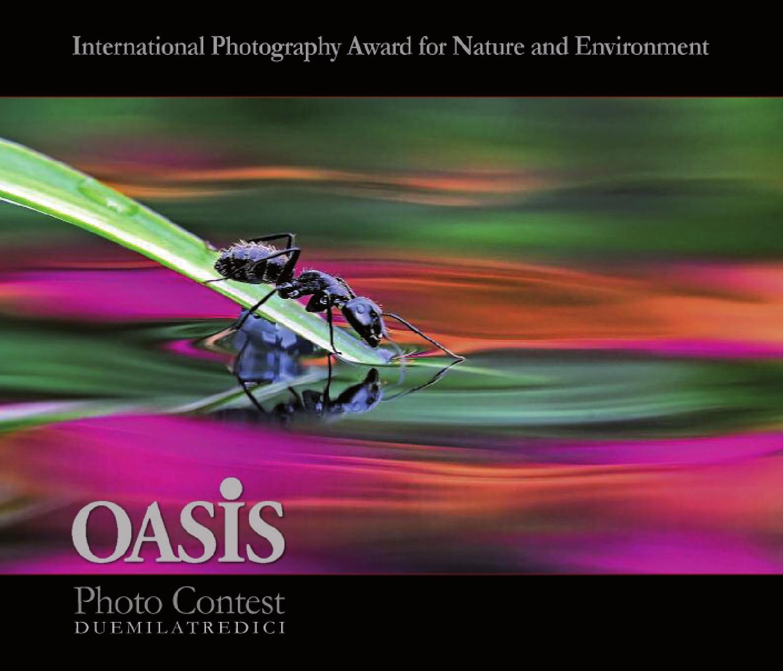 Catalogo Oasis contest 2013 by OASIS Magazine of Wildlife graphy issuu