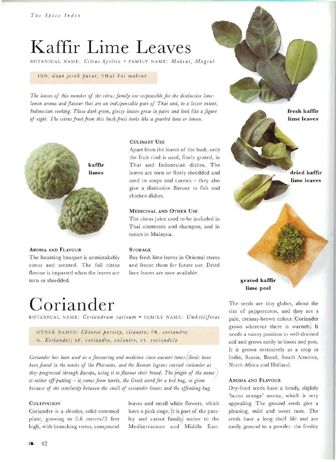 Choosing and using spices by Pat Barnes - issuu