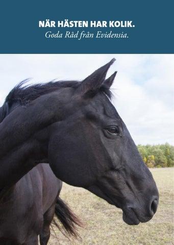 kolik häst orsak