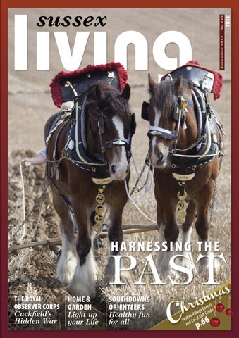 5e7b63260d November 2014 – Sussex Living Magazine by Sussex Living - issuu