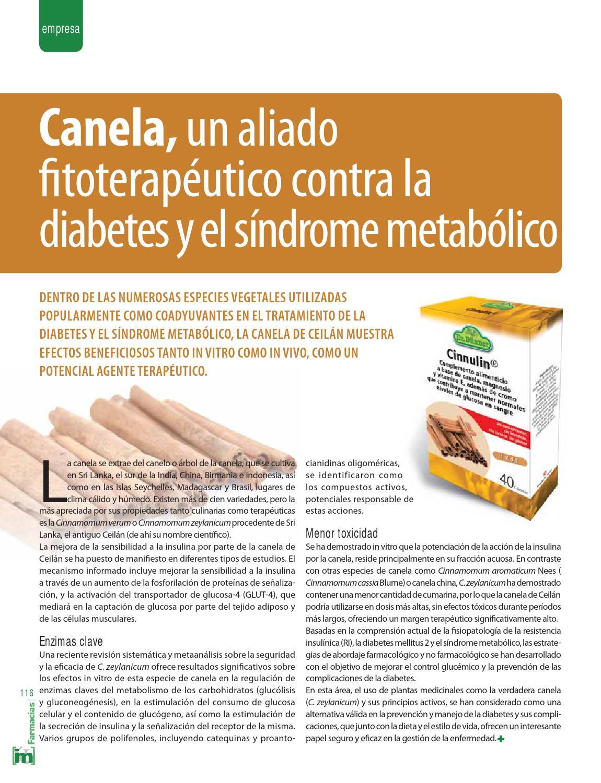 diabetes tratamiento de canela