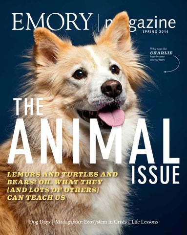 74ec281ee294 Emory Magazine   Spring 2014 by Emory University - issuu