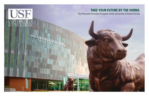 usf provost s scholars brochure by usf undergraduate admissions  page 1