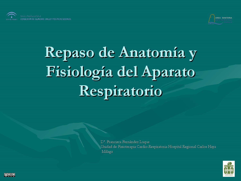 Fisiologia del aparato respiratorio by formacion axarquia - issuu