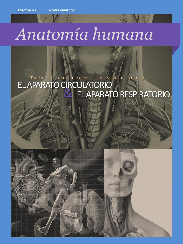 Anatomía Humana by María Teresa García Caraballo - issuu
