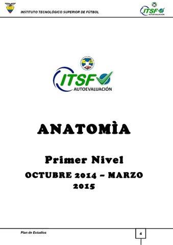 Syllabus anatomia oct2014 by Carlos Castillo - issuu