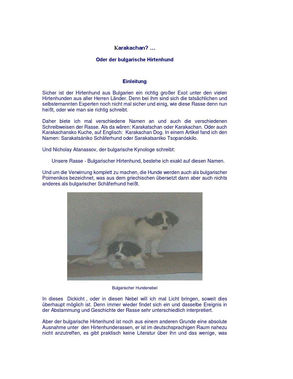 Bulgarische Hirtenhund by Bulgarian Shepherd Dog - issuu