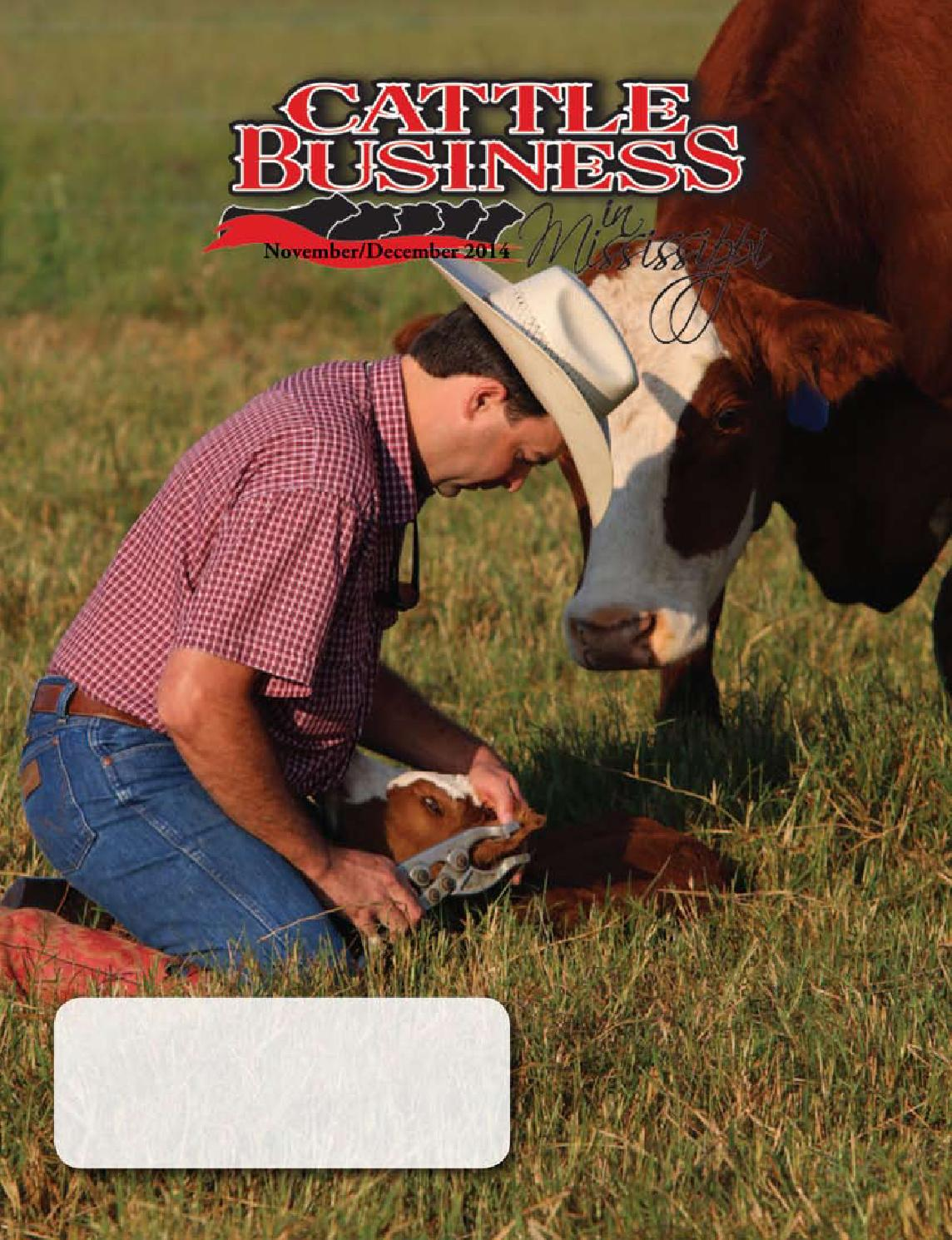 Cattle Business in Mississippi November/December 2014 by Cattle ...