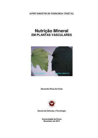 Nutrio mineral das plantas vasculares by alexandra costa issuu page 1 fandeluxe Gallery