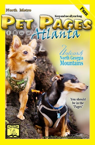 Pet pages atlanta for north georgia by pet pages atlanta issuu page 1 solutioingenieria Gallery