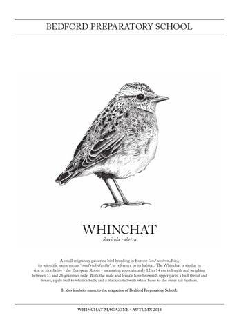 TÉLÉCHARGER WINCHAT WINDOWS 7