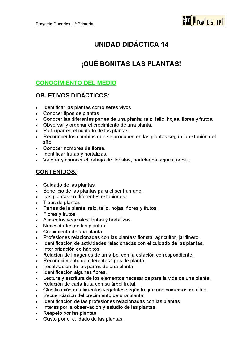 unidad didáctica- las plantas by Jesica Kau - Issuu