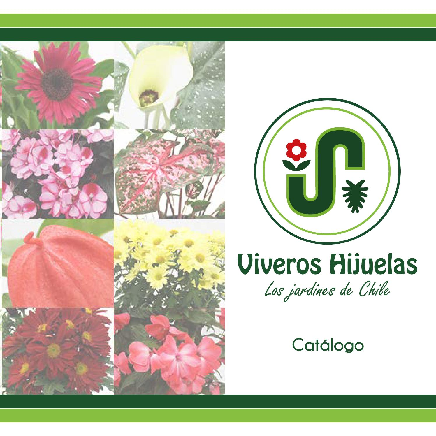 Cat logo general vivero hijuelas by mayela lopez issuu for Vivero hijuelas