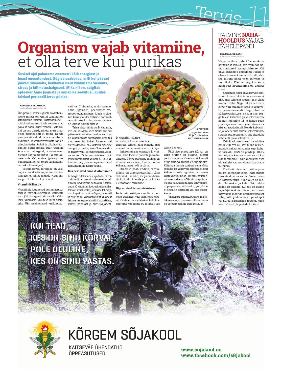 9dc3c502234 Noorteleht Tankla nr 17 (detsember 2014) by Valgamaa noorteleht Tankla -  issuu