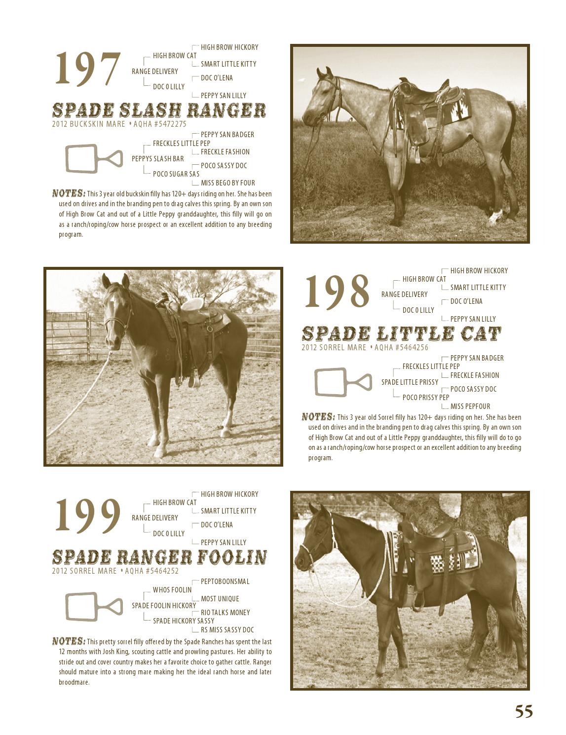 FWSSR Best of the Remuda Sale Catalog by Caballo Rojo Publishing ...