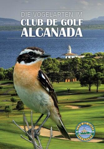 Aves Del Campo De Golf De Alcanada Mallorca By Mcarmen Oriola Issuu