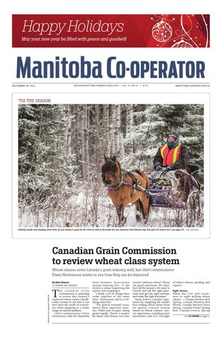 how to become q commissioner for oaths manitoba