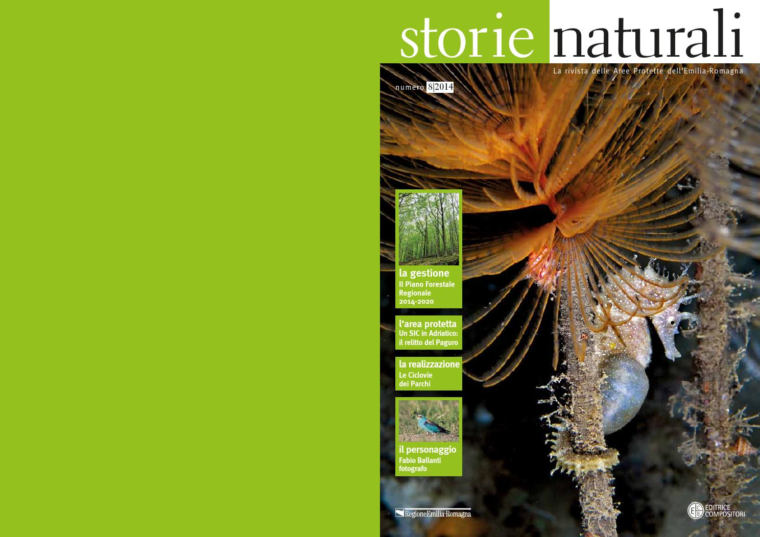 Storie Naturali n.8 2014 by servizio parchi - issuu f3256128a44