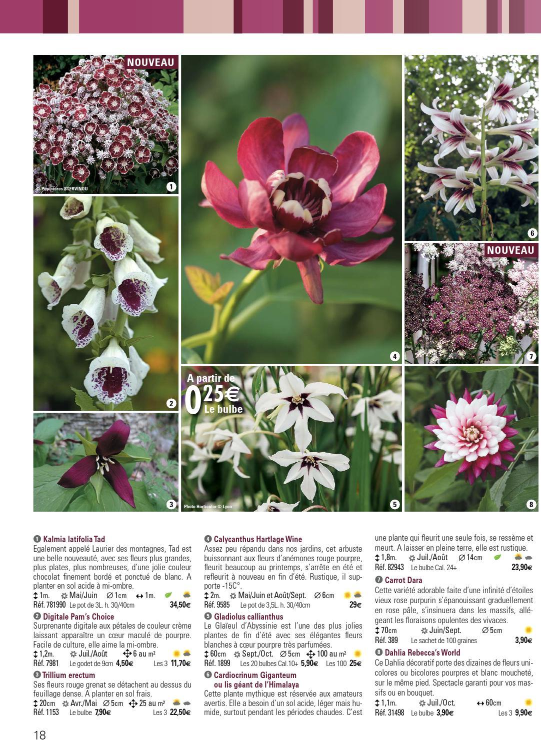 Catalogue Promesse de fleurs PE 2015 by Promesse de fleurs - Issuu
