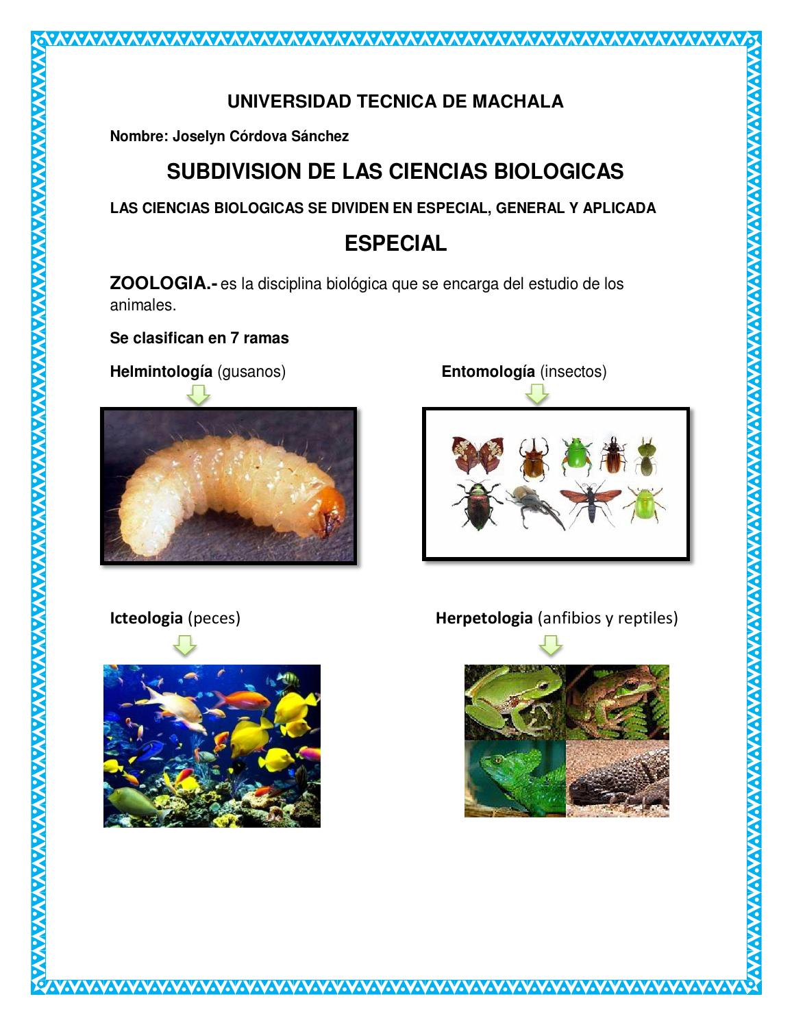 Subdivision de las ciencias biologicas by Jossi Cordova - issuu