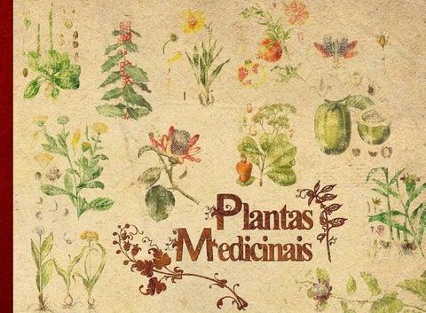 84913329f4 Apostila: Plantas Medicinais by DEA UMAPAZ - issuu