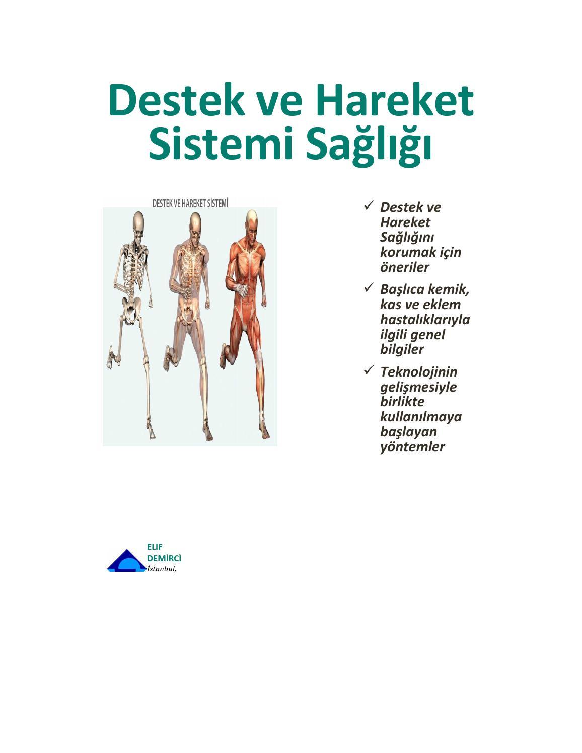 Düzenli egzersiz yapmak destek ve hareket sisteminin sağlığını nasıl etkiler