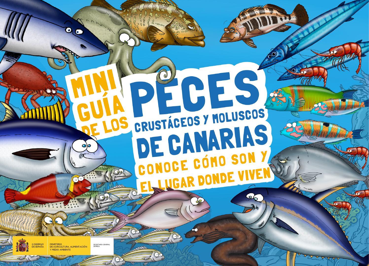 Miniguia de los peces. Oceanografíca by Matias Gutierrez - issuu
