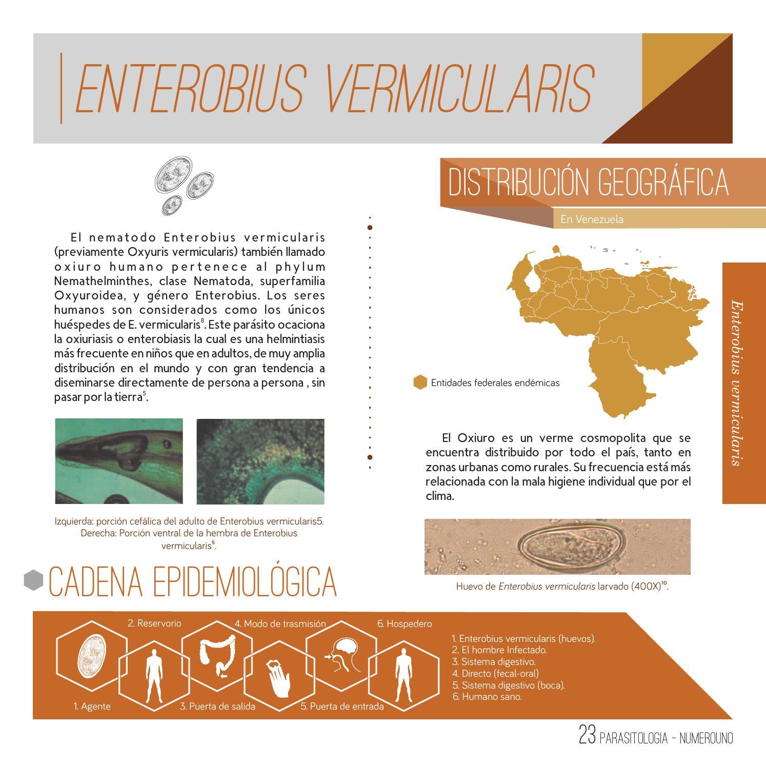 helminthiases și tratamentul lor papillomavirus traitement chez l homme