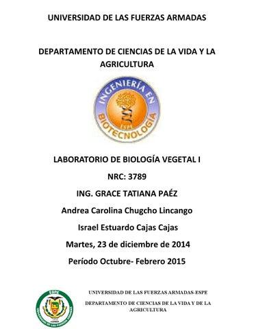 Informe N 6 Flor Y Fruto Andrea Cajas Israel 3789 Copy By
