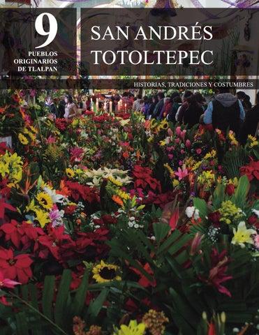 Ejidos de San Andres Totoltepec City