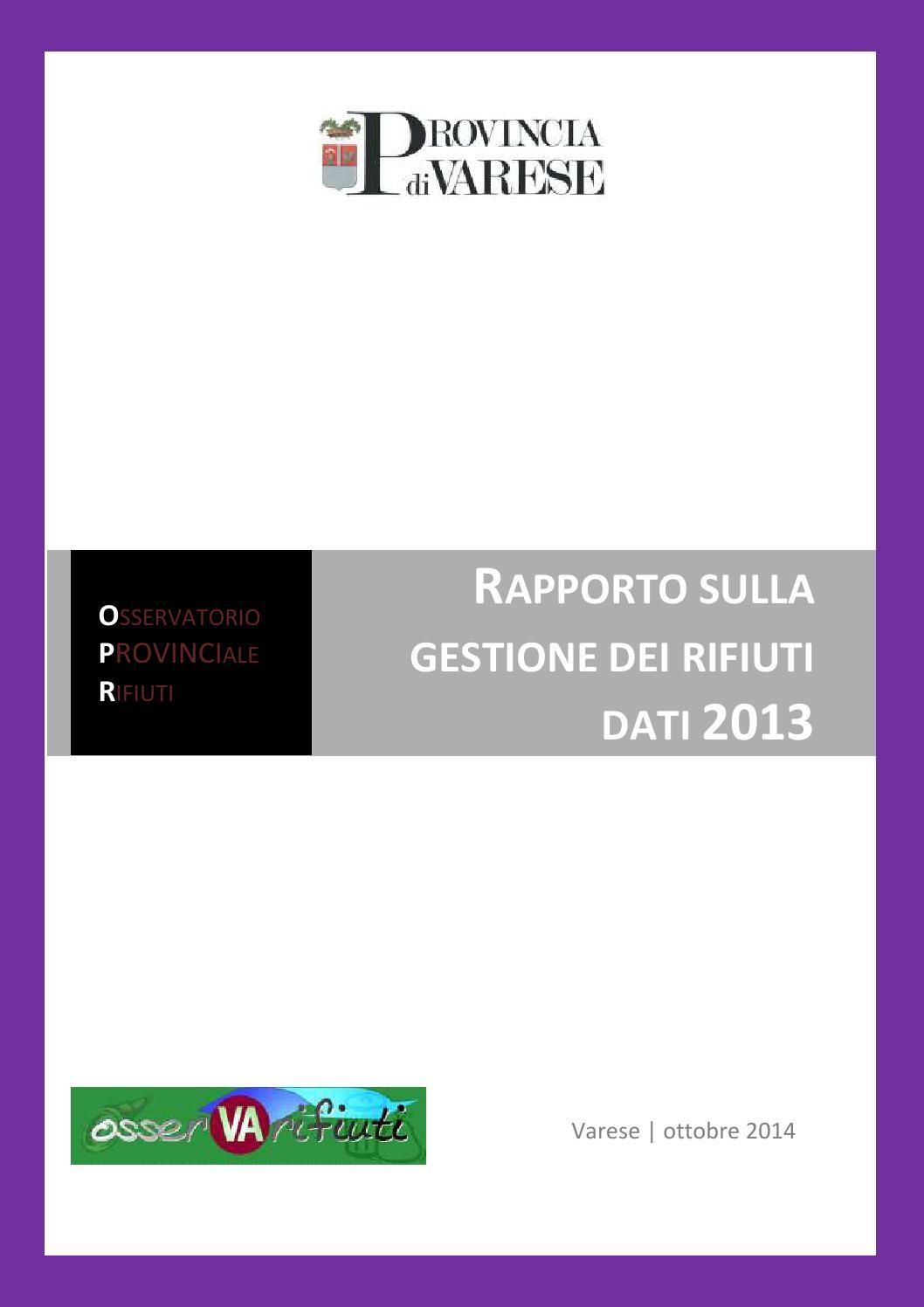 Calendario Coinger 2020.Rapporto Rifiuti Provincia Di Varese Dati 2013 By Giorgio