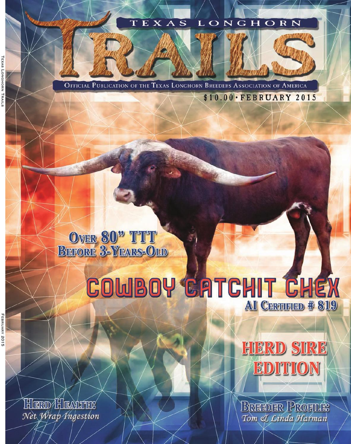 ** TEXAS LONGHORNS ** POSTER 003 Multiple Sizes Available