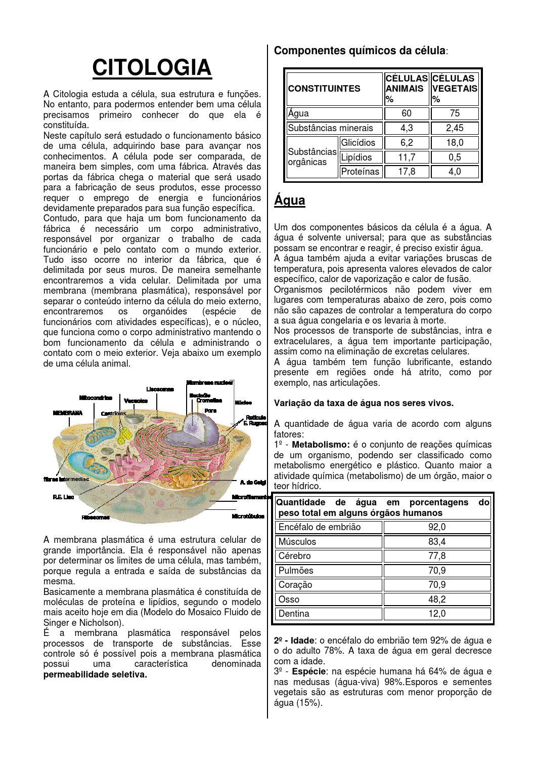Apostila biologia celular by Roberto Azevedo - Issuu