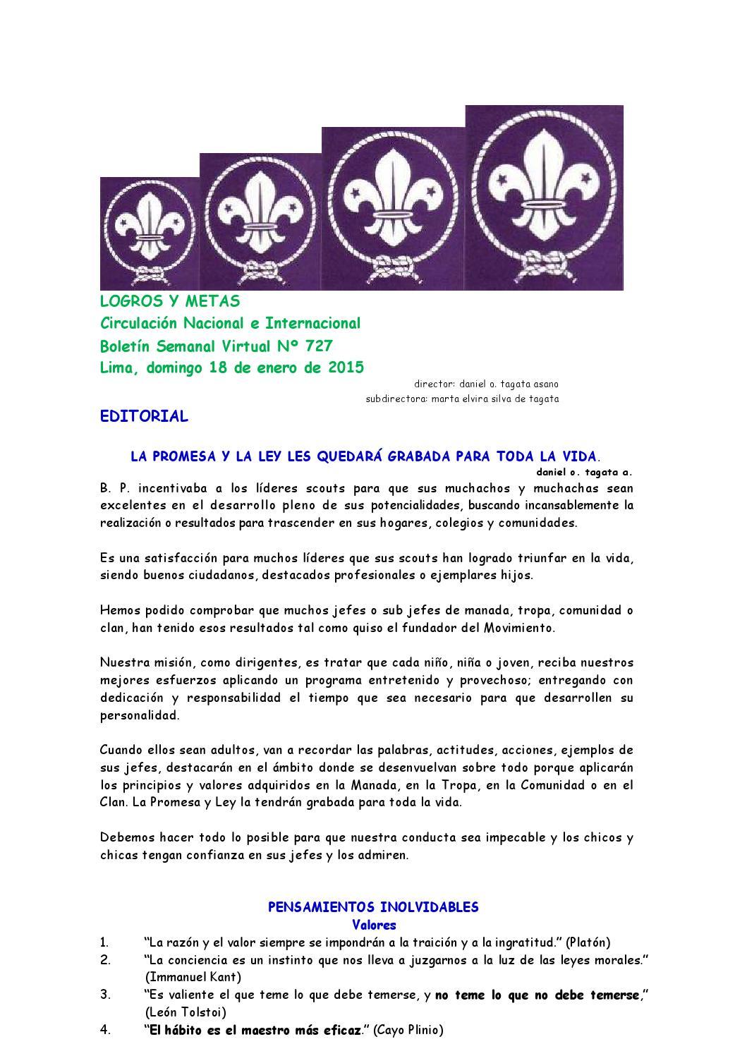 Jamboree Nacional by Boletín Logros y Metas - issuu