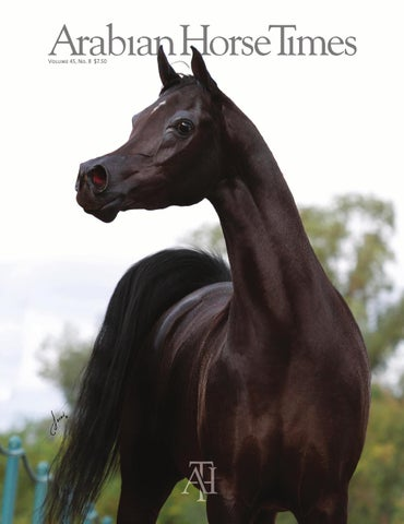 January 2015 Arabian Horse Times By Arabian Horse Times Issuu