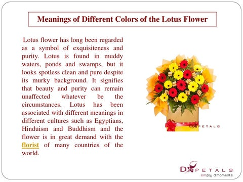 Meanings Of Different Colors Of The Lotus Flower By Addy Smith Issuu