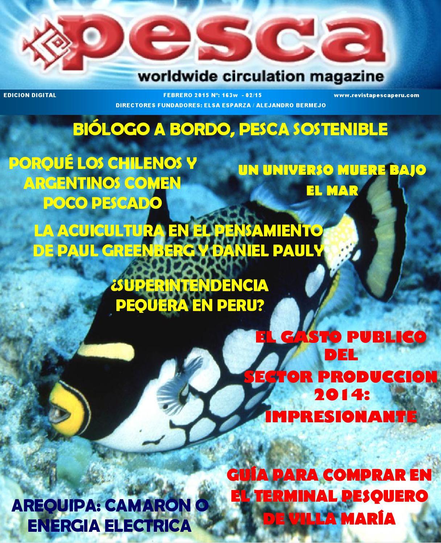 Revista Pesca febrero 2015 by Marcos Kisner - issuu
