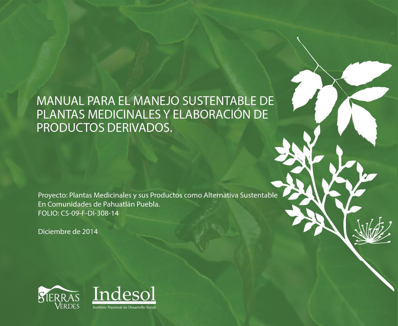 Manual para el manejo sustentable de plantas medicinales for Importancia de un vivero