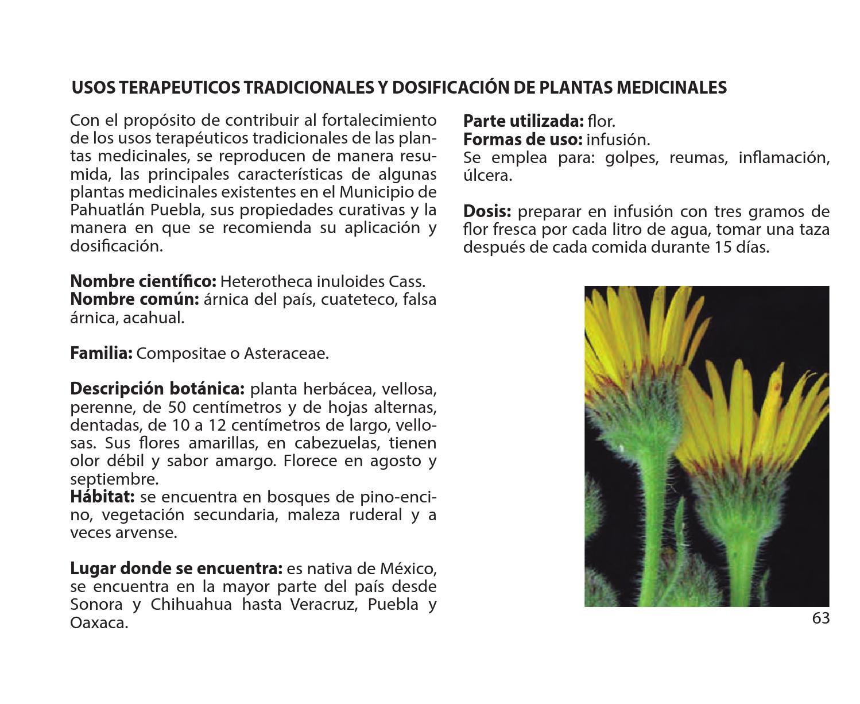 Manual para el manejo sustentable de plantas medicinales for Planta decorativa con propiedades medicinales